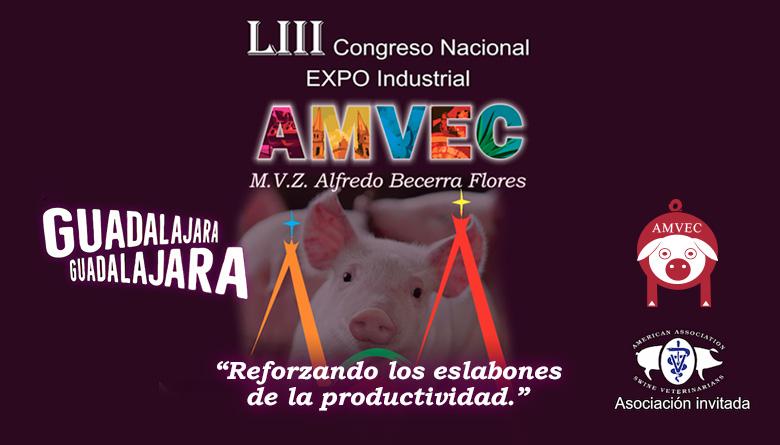 LIII Congreso Nacional AMVEC 2019