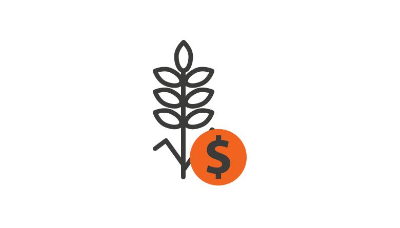 Sorgo - Reporte diario de precios de contado de sorgo en diversos mercados internacionales (Dólares/tonelada)