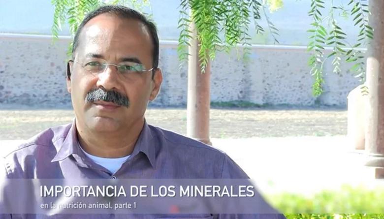 Importancia de los minerales en la nutrición animal
