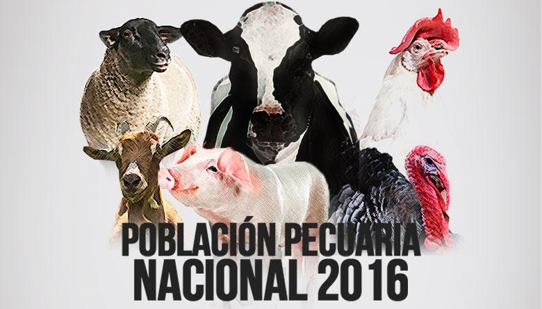 La población pecuaria creció en México 2.4%