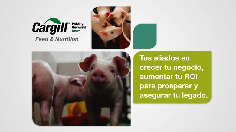Cargill, tus aliados en crecer tu negocio