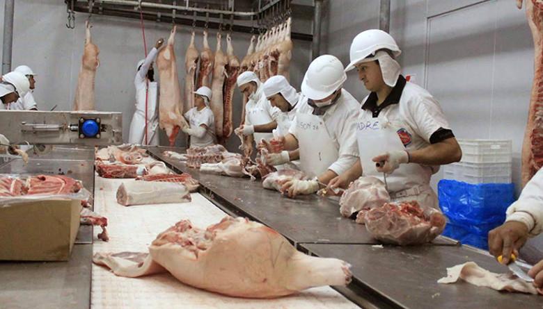 Cae 19% exportación de carne de cerdo en Brasil