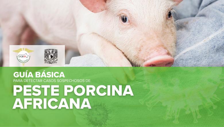 Guía básica para detectar casos sospechosos de Peste Porcina Africana