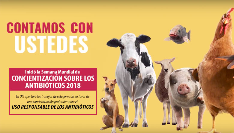 Inició la Semana Mundial de Concientización sobre los Antibióticos 2018