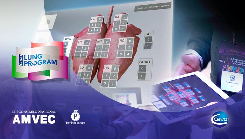 CLP de CEVA Nueva herramienta tecnológica en línea para la evaluación de lesiones a rastro