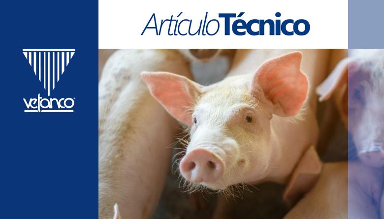 Salud intestinal del cerdo