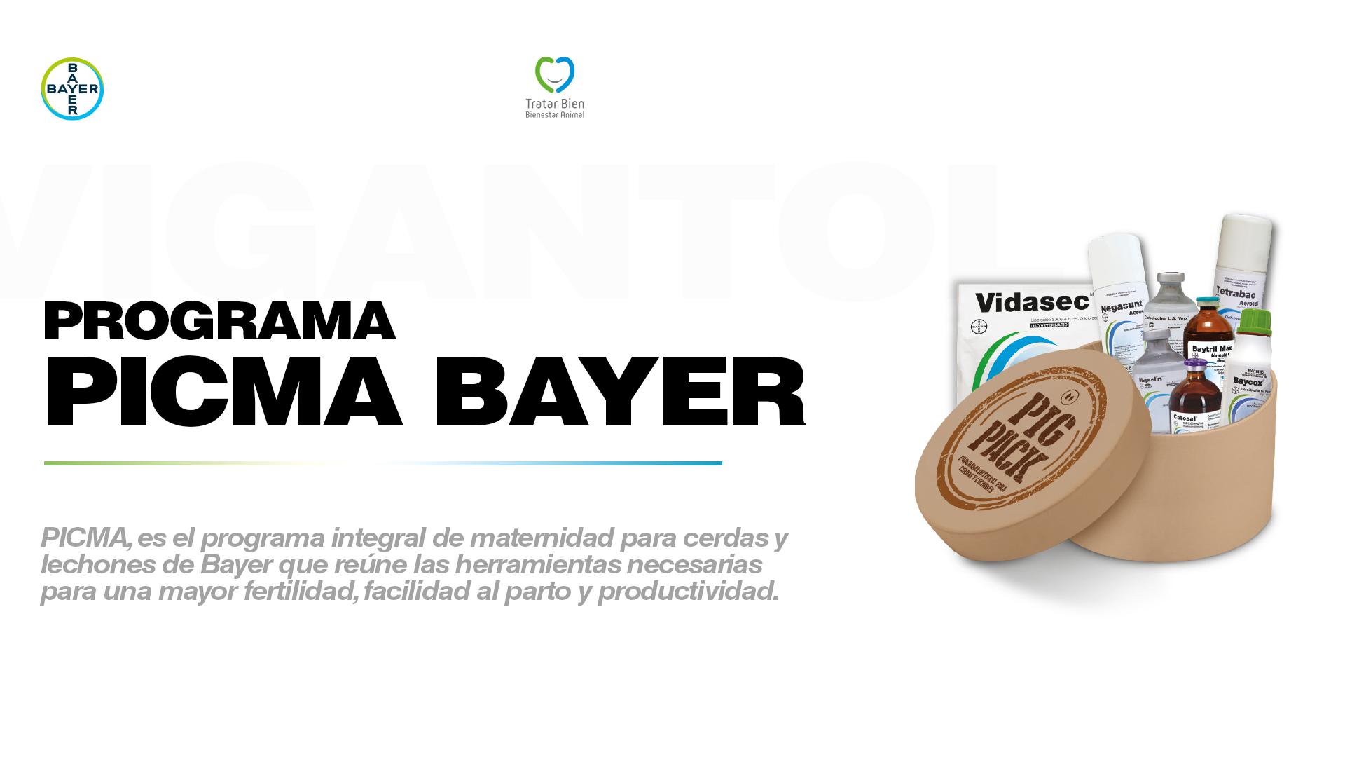 Programa PICMA de Bayer