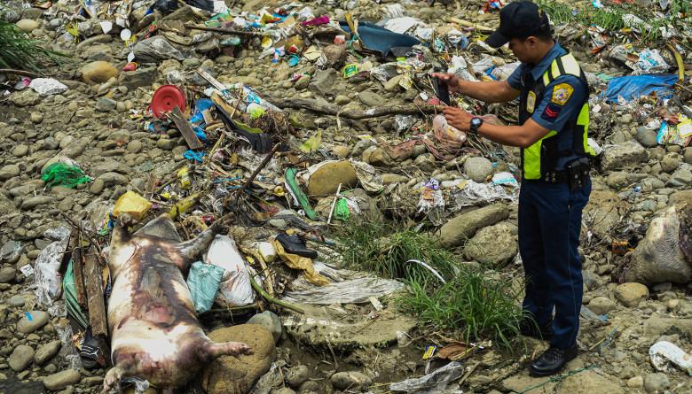 Estado de Calamidad en Filipinas por la situación de PPA