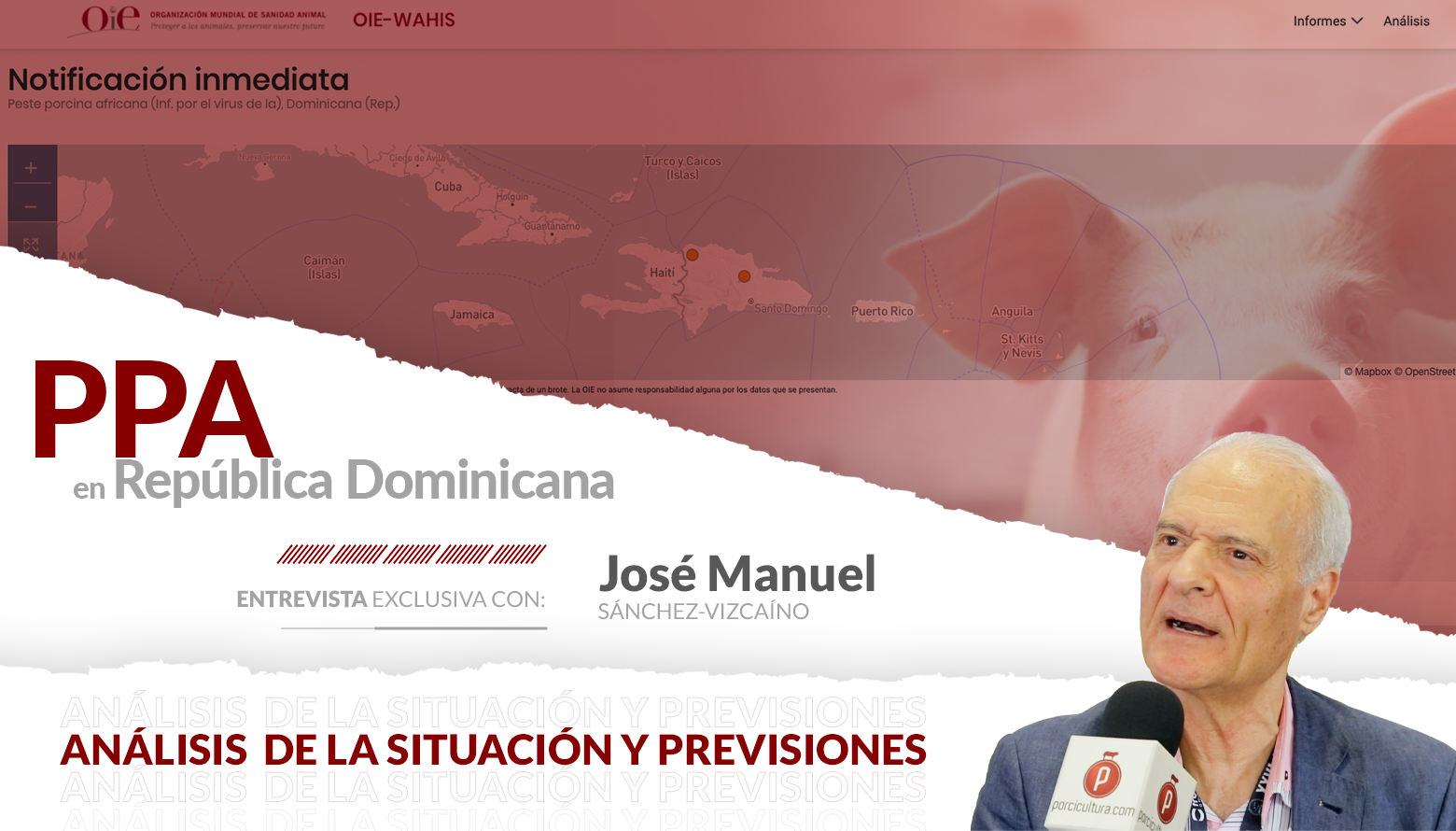 <p>La PPA en R. Dominicana es riesgo para América, pero no perdamos de vista a Asia; el mensaje de José Manuel Sánchez Vizcaíno</p>